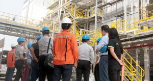 Board of Directors Visit a Biomass Power Plant Construction Project